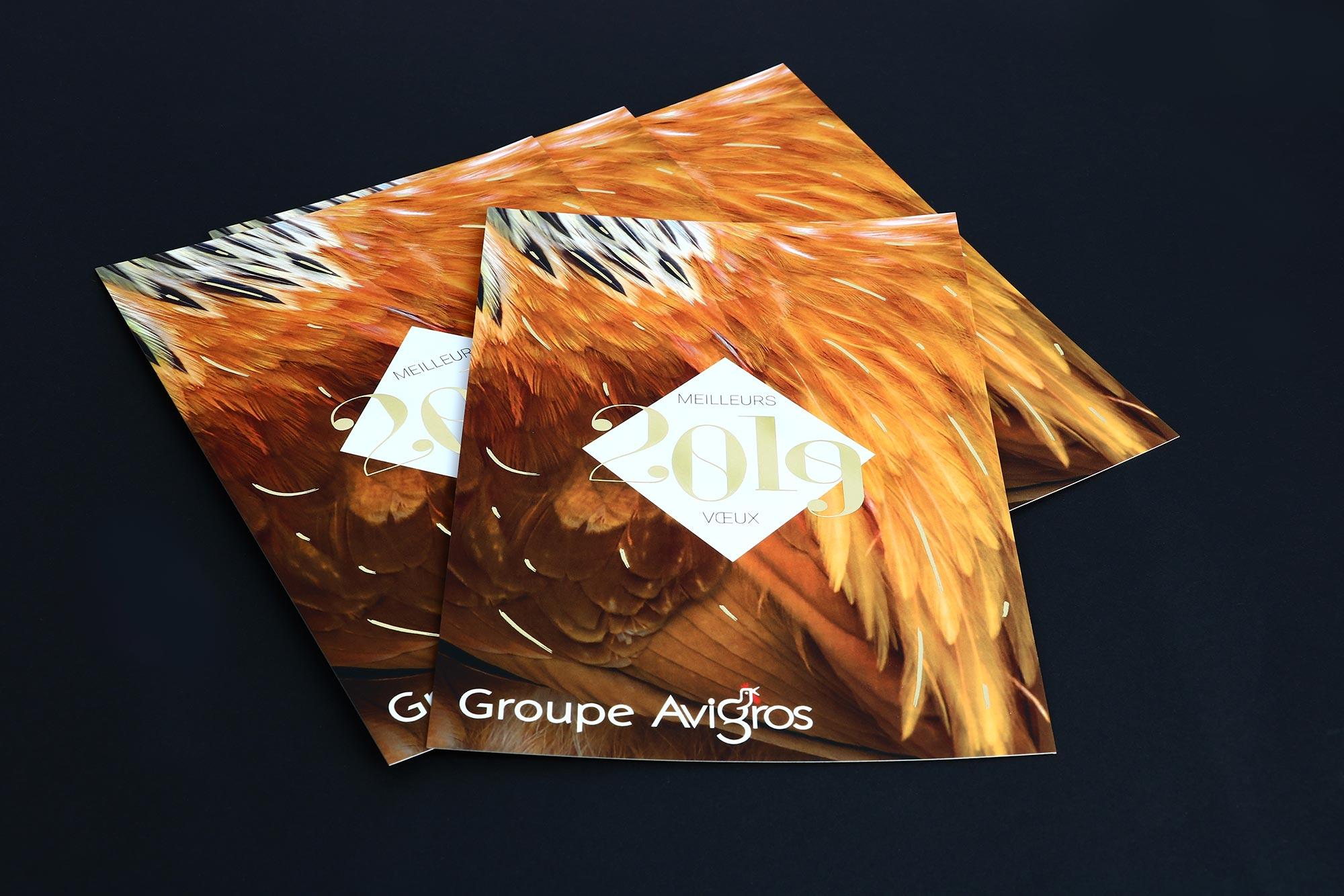 Avigros - Carte de voeux